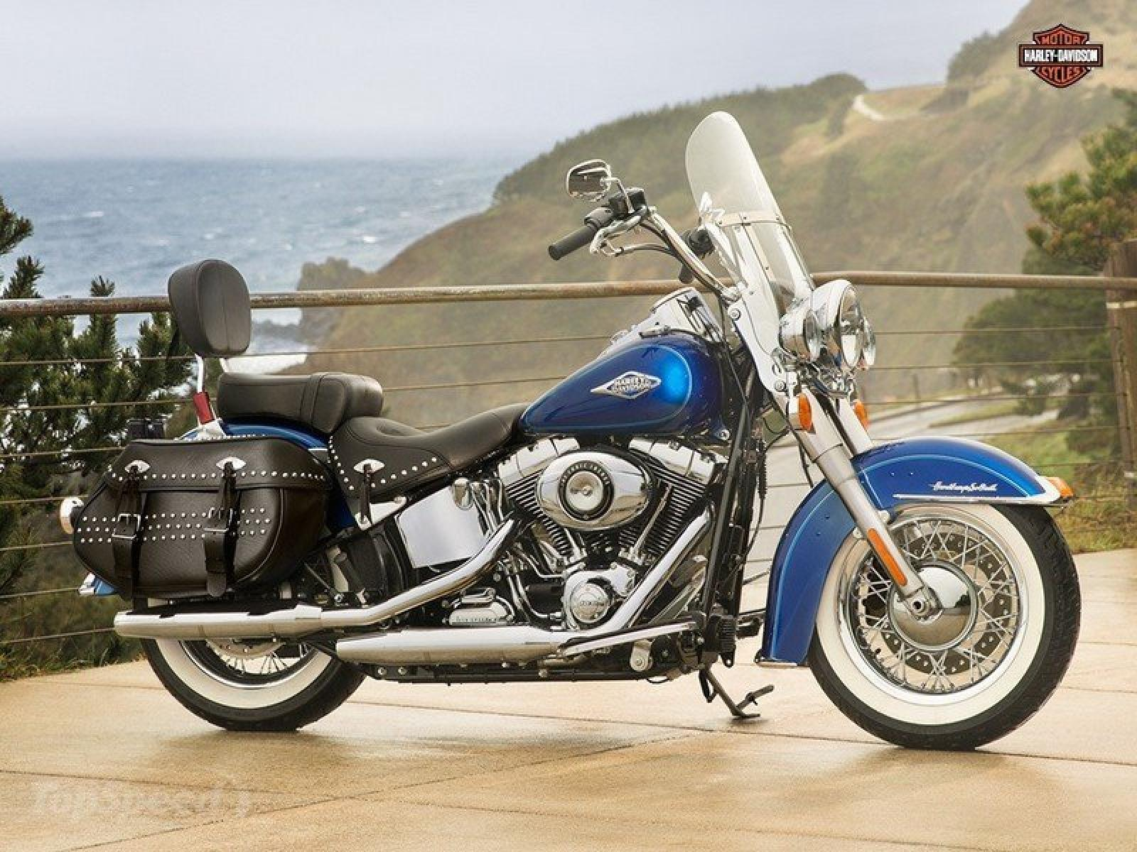 1988 Harley-Davidson FLST 1340 Heritage Softail (reduced effect) #2