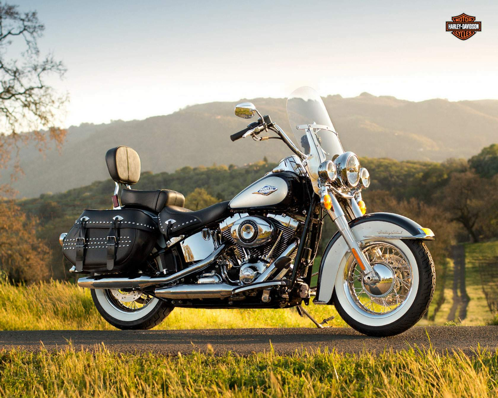 2001 Harley-Davidson Heritage Softail Classic Injection #9