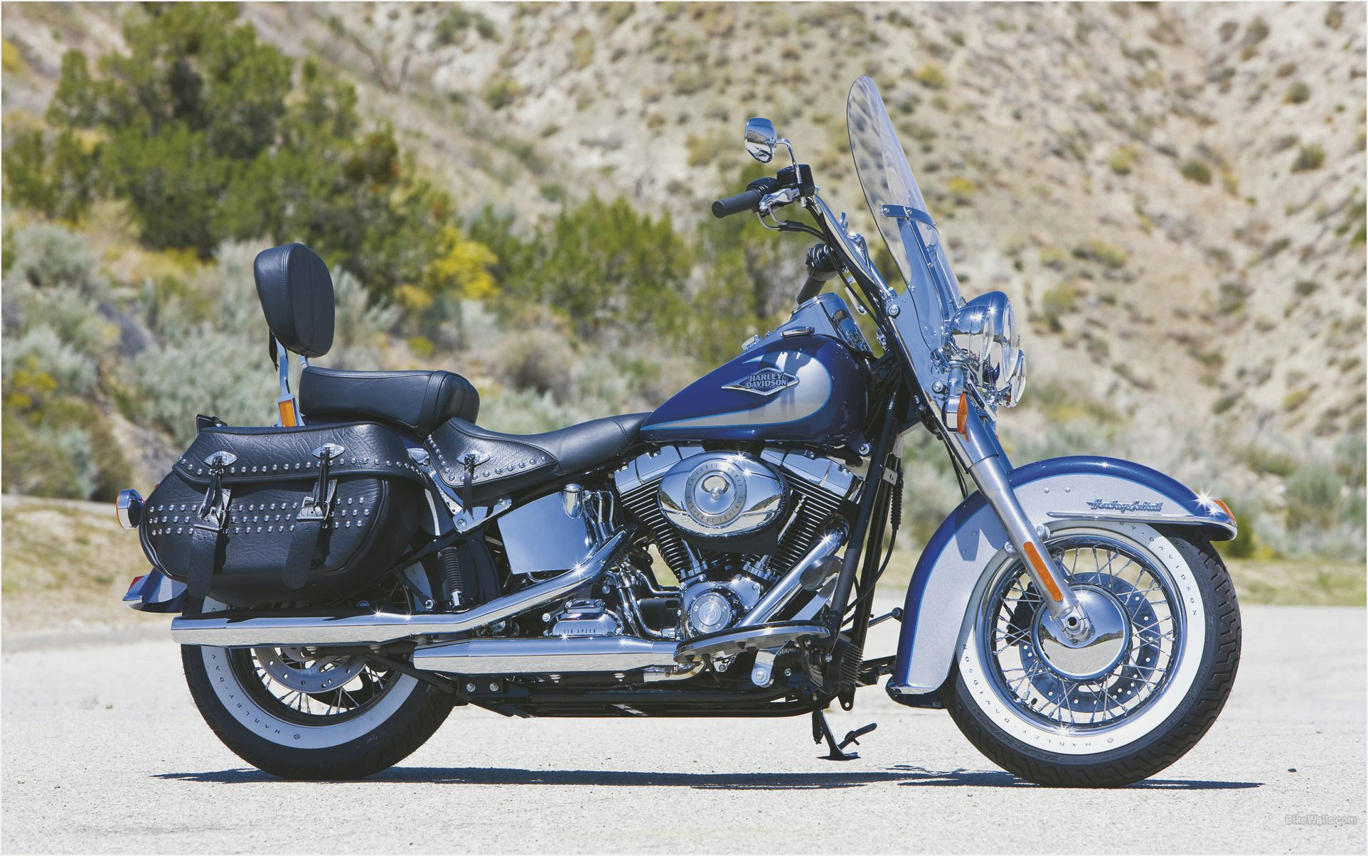 Harley-Davidson Heritage Softail Classic Injection #3