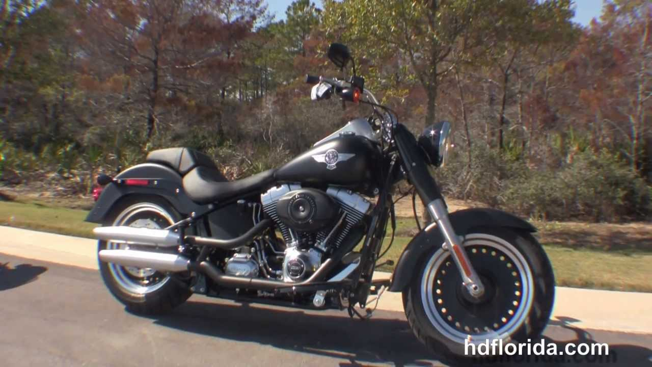 2014 Harley-Davidson Softail Fat Boy Lo #5
