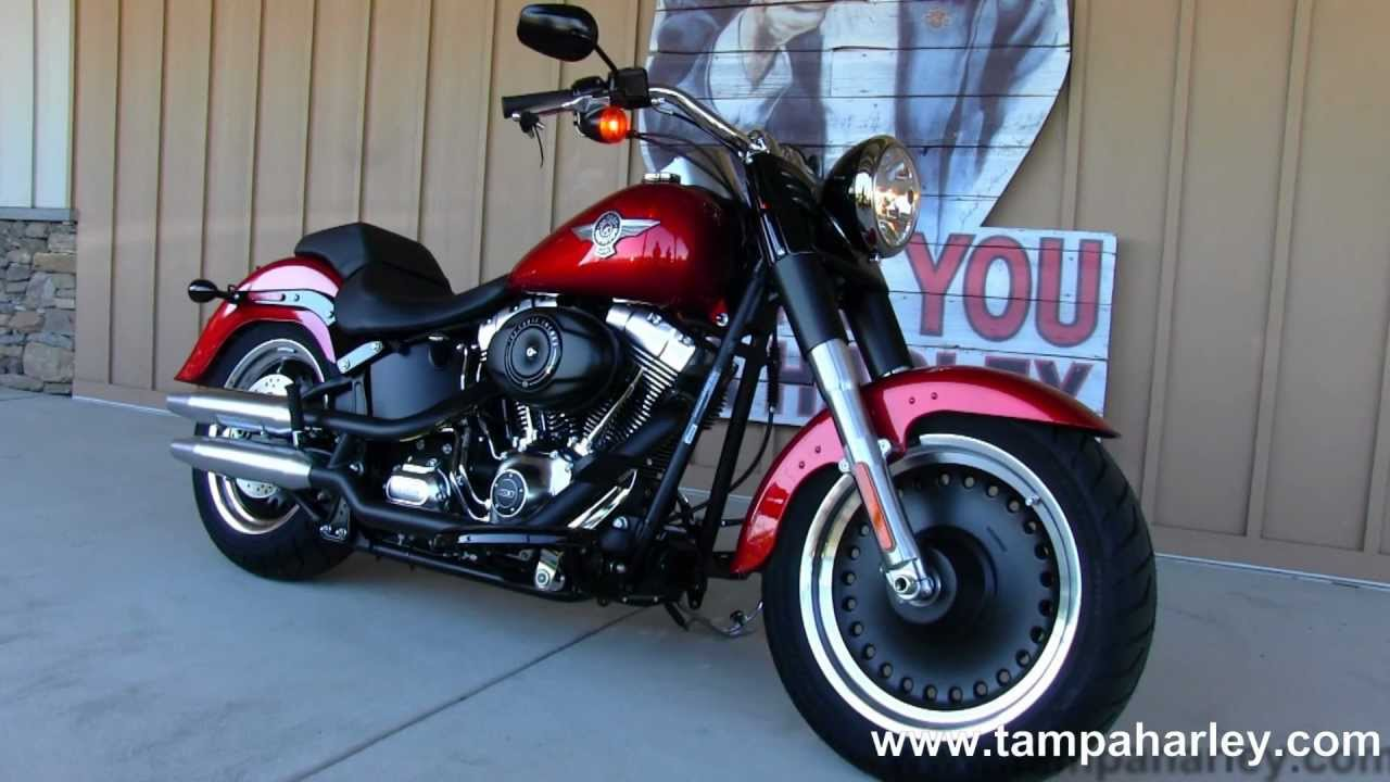2014 Harley-Davidson Softail Fat Boy Lo #6