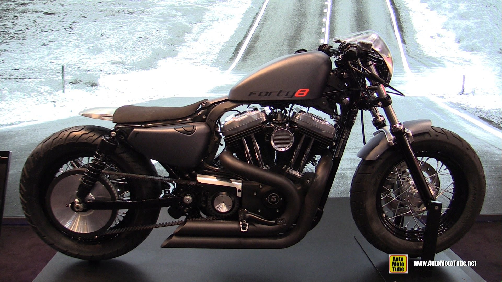 Harley-Davidson Sportster Forty-Eight #8
