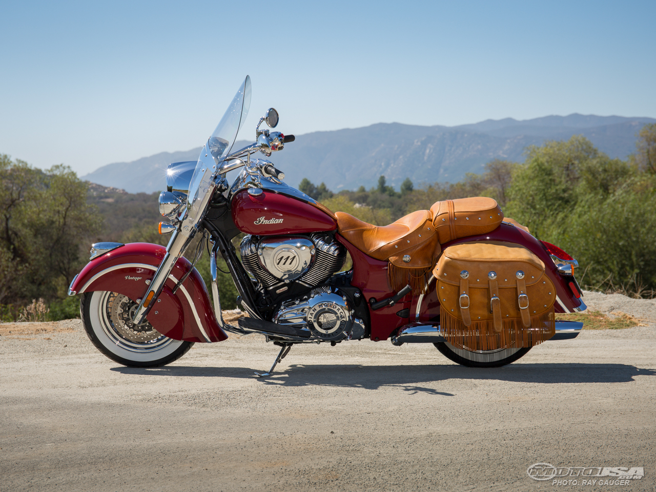 Indian Chief Vintage #5