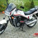 Honda VT500E (reduced effect)