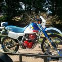 Honda XL600RM (reduced effect)