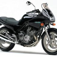 Yamaha Diversion