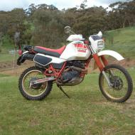 Yamaha XT 600 Tenere (reduced effect)