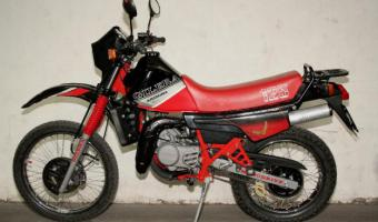 Gilera RX 125 Arizona