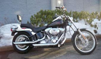 1989 Harley-Davidson FLST 1340 Heritage Softail (reduced effect)