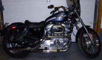 1989 Harley-Davidson XLH Sportster 883 De Luxe (reduced effect)