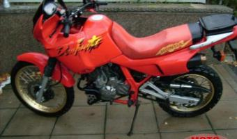 1991 Honda NX650 Dominator (reduced effect)