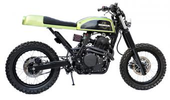 Honda NX650 Dominator (reduced effect)
