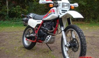 1983 Honda XL185S (reduced effect)