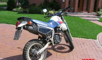 1986 Honda XL600R (reduced effect)