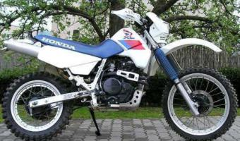 1987 Honda XL600RM (reduced effect) #1