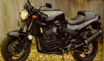1995 Triumph Speed Triple #1