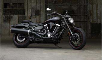 2009 Yamaha Midnight Warrior #1
