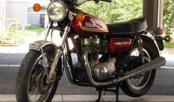 1981 Yamaha SR 500 G (cast wheels) #1