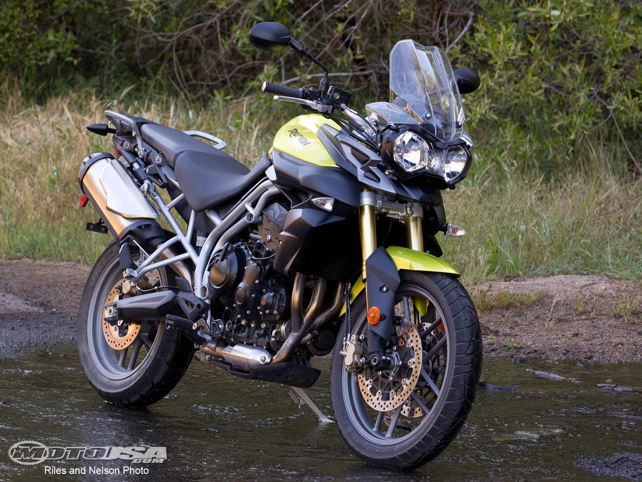 2011 Triumph New Tiger 800 #8