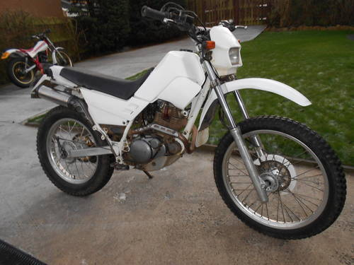 Yamaha XT 225 Serow #10