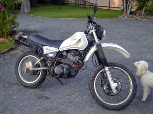 Yamaha XT 550 (reduced effect) #2